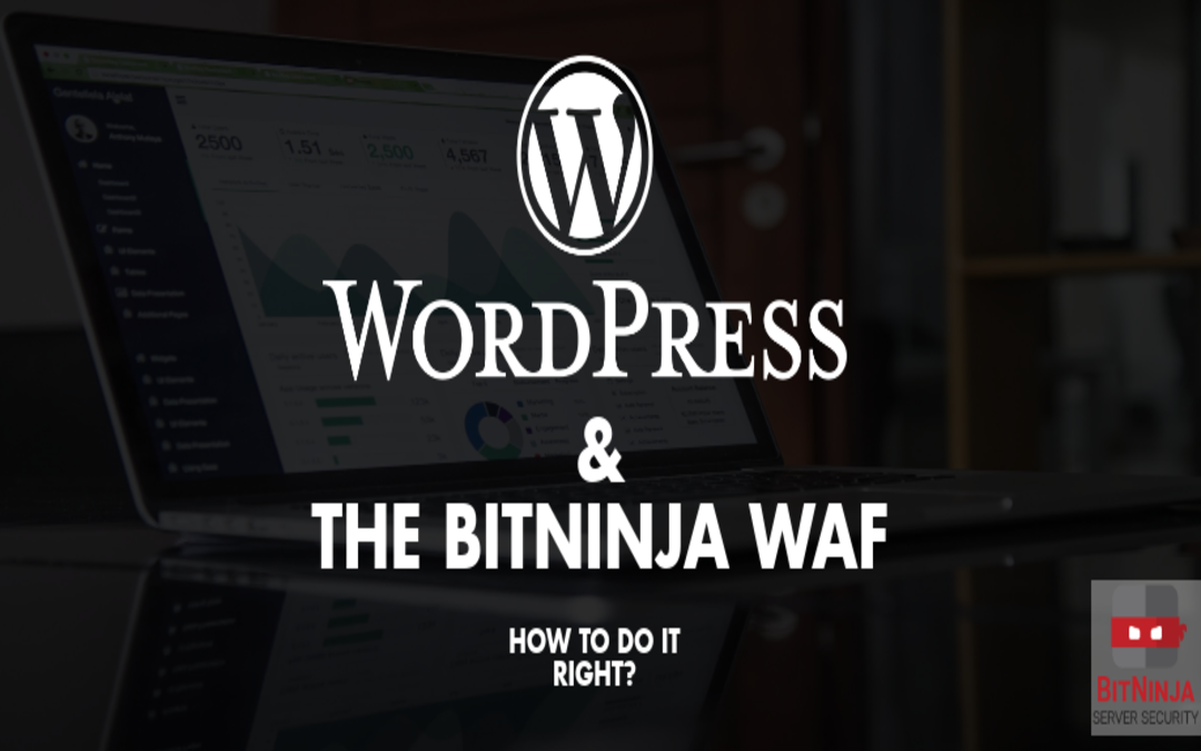 WordPress hosting and the BitNinja WAF – How to do it right? (Part 1: The basics)