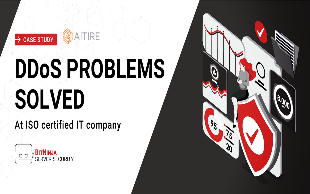 Case Study – DDoS Problems Solved at ISO Certified IT Company